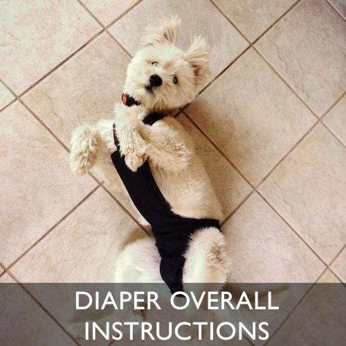 Barkertime Escape-Proof Dog Diaper Overall Wearing Instructions