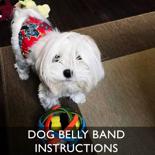 Barkertime Dog Belly Band Wearing Instructions