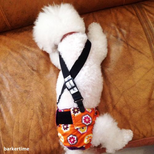 dog diapers with suspenders