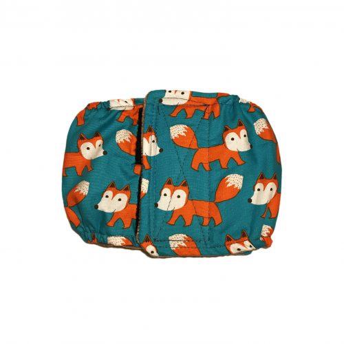 orange fox on teal belly band