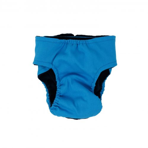 sky blue diaper - back