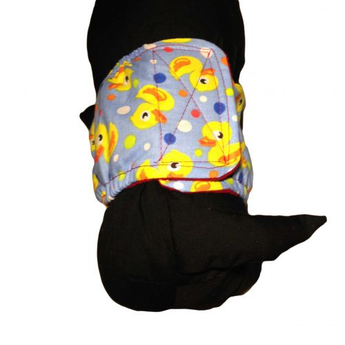 duckie belly band - model 2