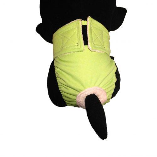 teal pul diaper - model 2