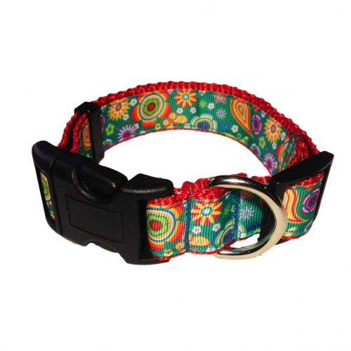 paisley flower on green collar