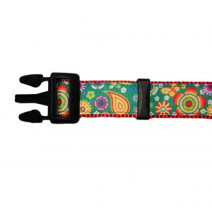Paisley Flower on Green Dog Collar