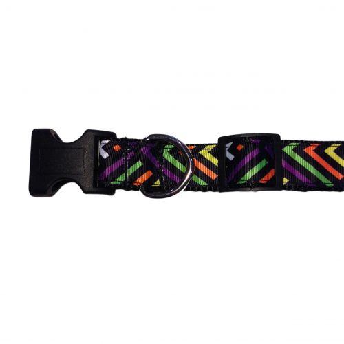 neon stripes on black collar - side 2
