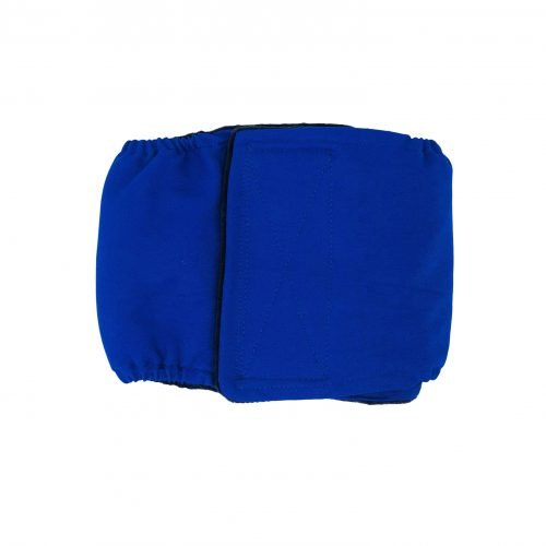 royal blue belly band