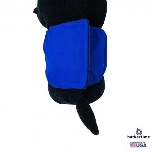 royal blue belly band - model 2