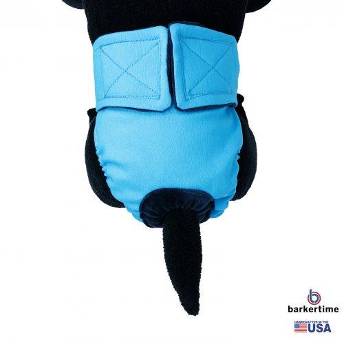 sky blue diaper - model 2