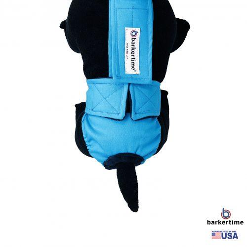 sky blue diaper overall - model 2
