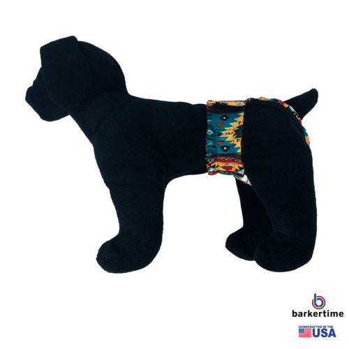 american southwest pattern on blue teal diaper pull-up. - model 1